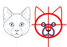 How To Draw Cats Big And Small: Face and Frame Differences Copic Drawings, Pencil Art Drawings, Animal Drawings, Drawing Sketches, Cat Face Drawing, Cat Drawing Tutorial, Cat Anatomy, Nature Sketch, Drawing Techniques