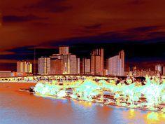 Miami Heat by Molly McPherson of Fine Art America