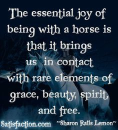 I grew up riding horses!  I love this quote.  Here's to my best friend - Moonmaid!!