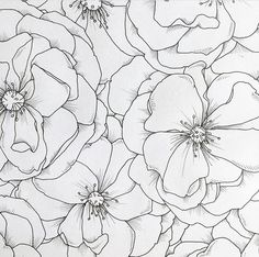 Bedroom Murals, Wall Murals, Simple Line Drawings, Free Hand Drawing, Muse Art, Wall Drawing, Watercolor Flowers, Watercolour, Coloring Pages