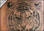 tattoos of tiger heads - Bing Images Tiger Head, Bing Images, Tattoos, Animals, Tatuajes, Animales, Animaux, Tattoo, Animal