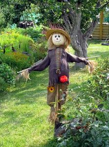 Scarecrow in a field--Russian site:  How to make a garden scarecrow with his own hands? Easy! Take a count of stick nailed to it crossbar - it will hand. Dress up this old coat rack suit, or dress, stuffing grass or straw. Making the head of an old pillowcase, fill with straw, sew on buttons for eyes and nose, mouth paint or draw a marker. Head scarecrow set up on the top of the stake above - an old bucket or hat. All scarecrow ready!