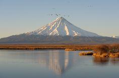 Kamchatka Penninsula, Russia