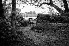 Park Bench by Victor Garza on 500px
