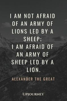 25 BEST Alexander The Great Quotes (On Success, Knowledge..)