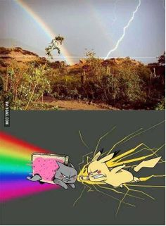Nyan Cat vs Pikachu (Rainbow vs Lightning Bolt) - Funny Pokemon - Funny Pokemon meme - - Lo que la gente ve (ariva) Lo que yo veo (abajo) The post Nyan Cat vs Pikachu (Rainbow vs Lightning Bolt) appeared first on Gag Dad. Really Funny Memes, Stupid Funny Memes, Funny Relatable Memes, Funny Geek, Nyan Cat, Pikachu Cat, Pokemon Funny, Pokemon Go, Pikachu Memes