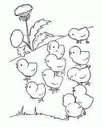 Resultado de imagen para dibujos de gallinas para pintar