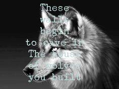 I like wolves too