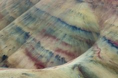 Abstract Nature Patterns-7