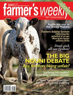 26 September: The BIG Nguni debate: Are feedlots being unfair? Agricultural Sector, 26 September, Magazine, Digital, Reading, Windows 8, Farmers, South Africa, Southern