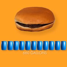 Cowspiracy | The Sustainability Secret 660 gallons of water for one burger
