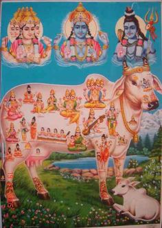 The wish-fulfilling cosmic cow (kama-dhenu), shown containing all the deities; bazaar art, 1970's