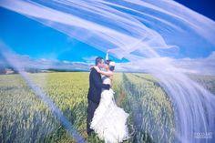 ベールを使った美しい結婚写真まとめ | 「こんなウェディングやりたい!」が写真から見つかるFamarry Plus