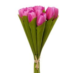 Tulip Bouquet Spring (12 flowers 36cmST.) Hot Pink