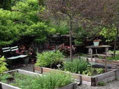 Minikøkkenhaver i trærammer