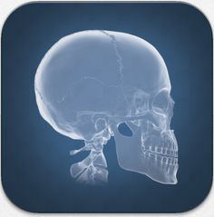 Two Guys and Some iPads: Anatomy Update Allows Users to Explore the Human Body like never before! Interactive Whiteboard, Teaching Methods, Learning Styles, Body Systems, Always Learning, Teaching Science, Augmented Reality, Human Body, Education