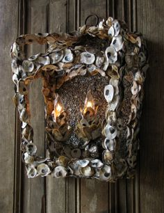 Solaria Lighting Oyster Sconce