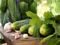 Hogyan marad szép zöld színű, ropogós az eltett ecetes uborka? Íme a titok! - www.kiskegyed.hu