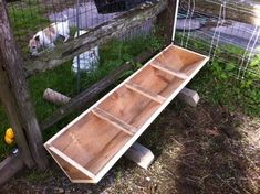 Pigs | Black Brook Farm Growers | Carlisle, MA