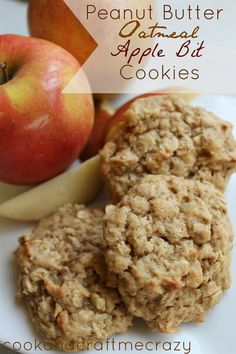 Cook and Craft Me Crazy: Peanut Butter Oatmeal Apple Bit Cookies