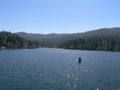 Begin investing in affordable land!! The housing market is forecast to accelerate! Get your parcel of land now! they are not making any more of itNO R... #lake #arrowhead #reserve #near #mountain #sale #southern #calif #land