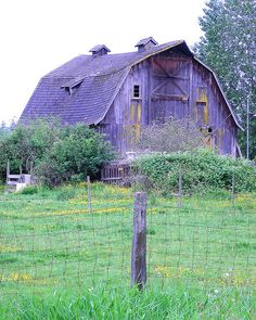 Old barn in Aldergrove | Flickr - Photo Sharing! Think someone photo shopped this barns color