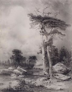 Алексей Саврасов. Старые сосны. 1854.