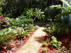 Colorful Tropical Garden Ideas | Tropical plants and a gravel path create a beautiful view from the ...