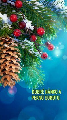 Australian Men, Christmas Tree, Night, Holiday Decor, Quotes, Teal Christmas Tree, Quotations, Aussies, Xmas Trees