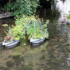 Blumenschiffchen als #Werbung