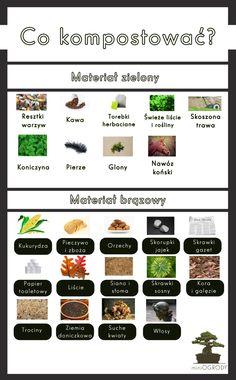Garden Inspiration, Beautiful Gardens, Garden Plants, Garden Design, Home And Garden, Herbs, Health, Flowers, Outdoor