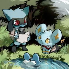 Pokemon - Riolu, Shinx, and Froakie Luxray Pokemon, Gif Pokemon, Pokemon Fan Art, Pokemon Stuff, Cute Pokemon Pictures, Cute Pictures, Pikachu, Pokemon Life, Fanart