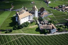 HighFlyCam : Luftaufnahmen mit Drohne - images aériennes par drone. Le Château d'Aigle. Photos, Pictures, Vineyard, Dolores Park, Images, Travel, Beautiful, Grape Vines, Paisajes