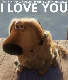 You can find love in the strangest of places. Right, Dug? #pixar #dug #love #up