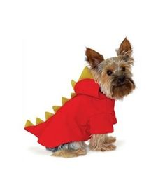 Pet costume ideas! (too bad we have to shut my dog in a bedroom during halloween to prevent barking/escaping...)