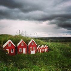 Icelander's believe in Elves and actually build tiny little houses for them in their yards. They all have sod roofs. I want to build a little trio in my yard.