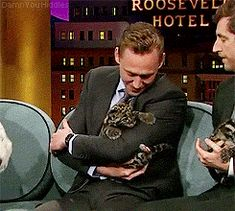 Hiddles has a new friend>>>>> that's adorable