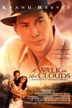 A Walk in The Clouds.. best chick flick ever :P