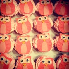 Owl cupcakes for a baby girl shower. Half Italian Cream, half Black and White (double chocolate with cream cheese icing).