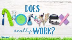 Does Norwex Work?