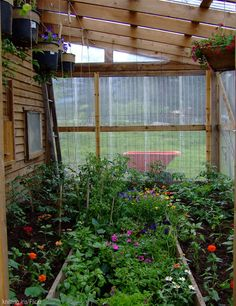 Prevent insect pests and fungal diseases from ruining your greenhouse plants with these natural, DIY solutions.