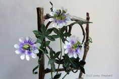 Dollhouse Scale Passion Flower Vine on a Twig Support - Photo © 2015 Lesley Shepherd
