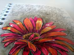 """""""Daisy Red"""" 