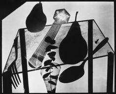 Abelardo Morell - Still Life With Pears - Photogram on 20'' x 24'' Film, 2006