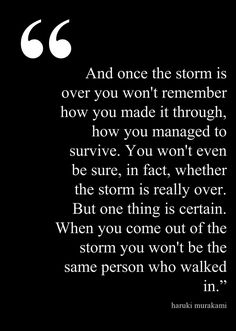 Life Lessons 101: surviving the storm ...