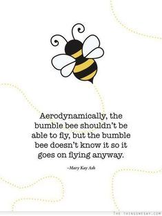 Aerodynamically the bumble bee shouldn't be able to fly but the bumble bee doesn't know it so it goes on flying anyway