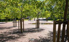 Lohenpyrstön puiston jalavia ja lehmuksia Parks, Outdoor Structures, Garden, Garten, Gardens, Tuin, Yard, Parkas