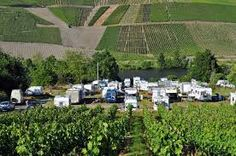 Stellplatz Weingut Studert-Pruem am Fluss Mosel Bergsattel-Kues, Wehlen