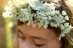 flower crown of Queen Ann's lace