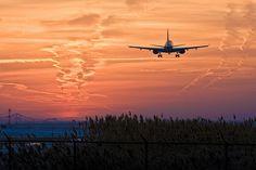 Athena's Mini blog • l-aeroport: (by westvletern12)